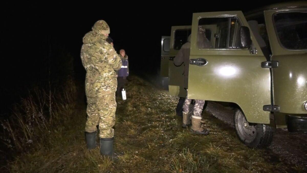 Охота на косулю в Украине и соседних странах