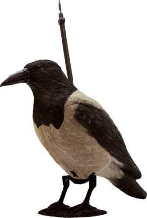 Подсадная ворона Birdland